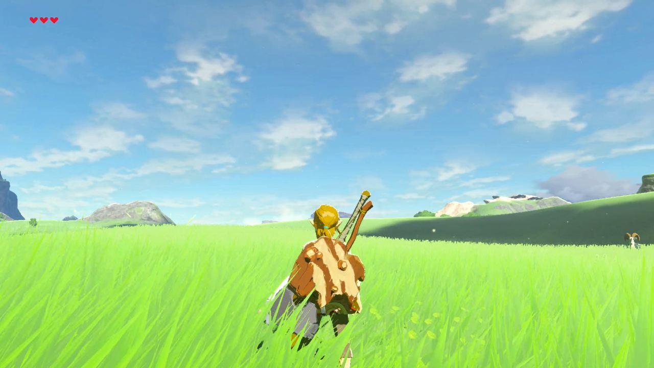 Breath of the Wild поле