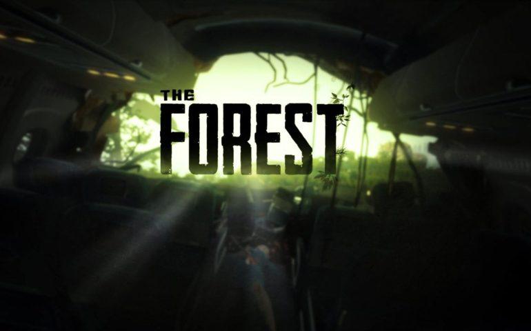 Гайд The Forest