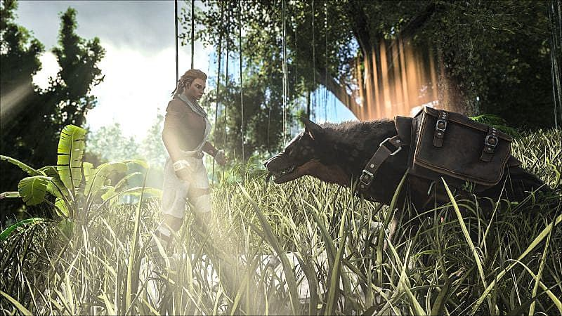 ARK: Survival Evolved руководство