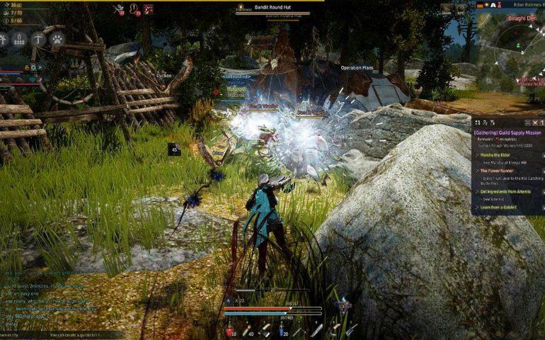 Black Desert Online гайд по мини-игре Amity